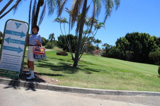 palm meadows golf course review