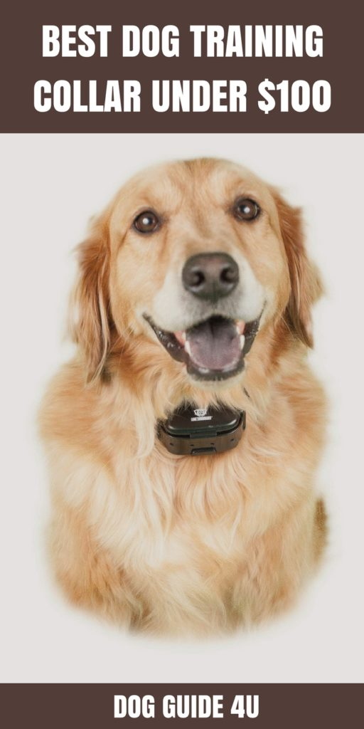 the perfect dog training system reviews