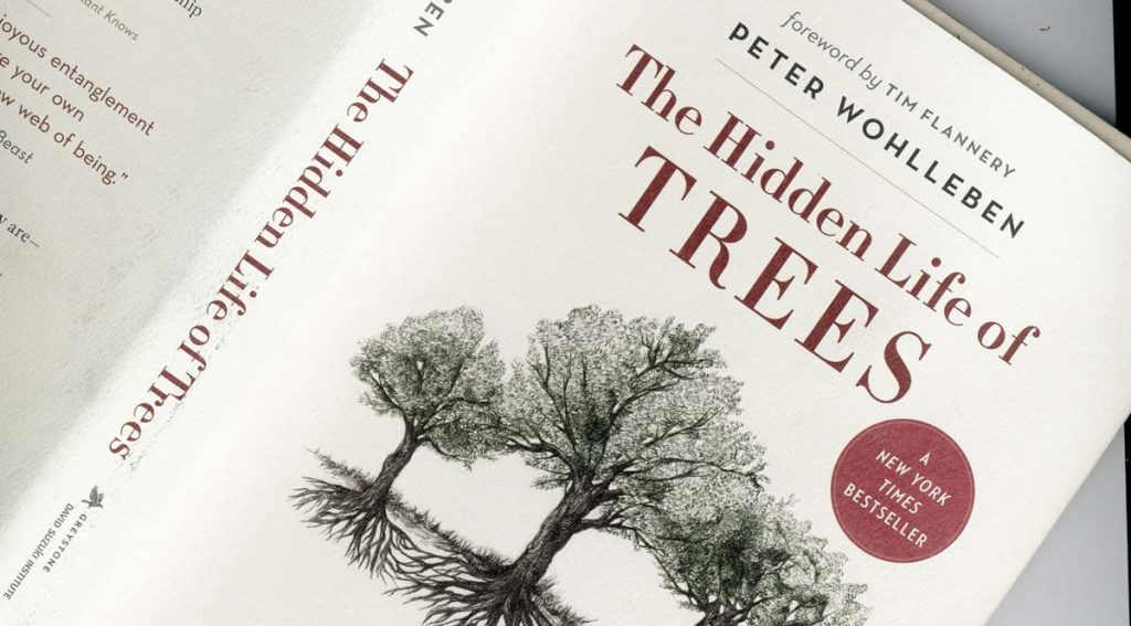 hidden life of trees review