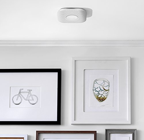 dual sensor smoke alarm reviews