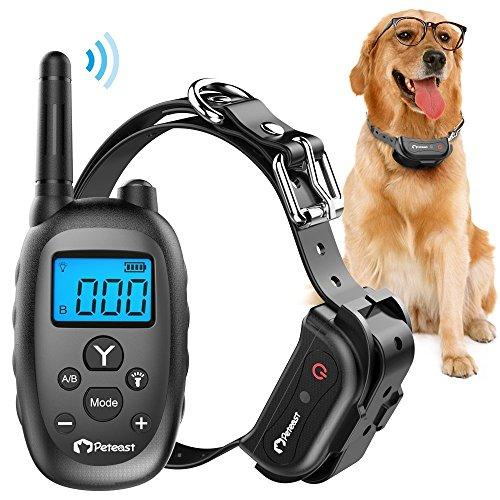 e training for dogs reviews