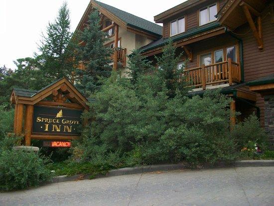 spruce grove inn banff reviews